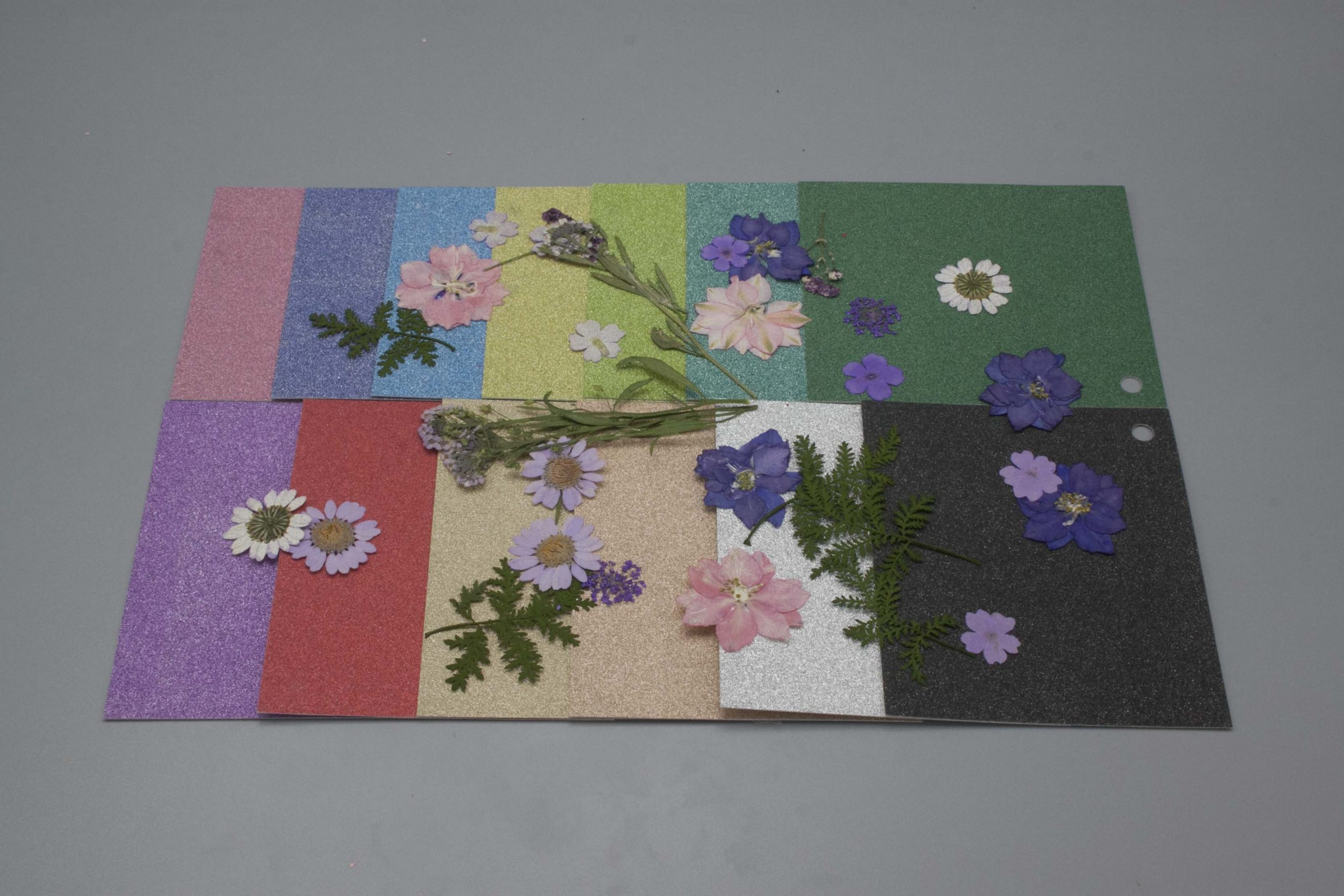Image of Dreamtop Dried Flowers with Glitter Cardstock