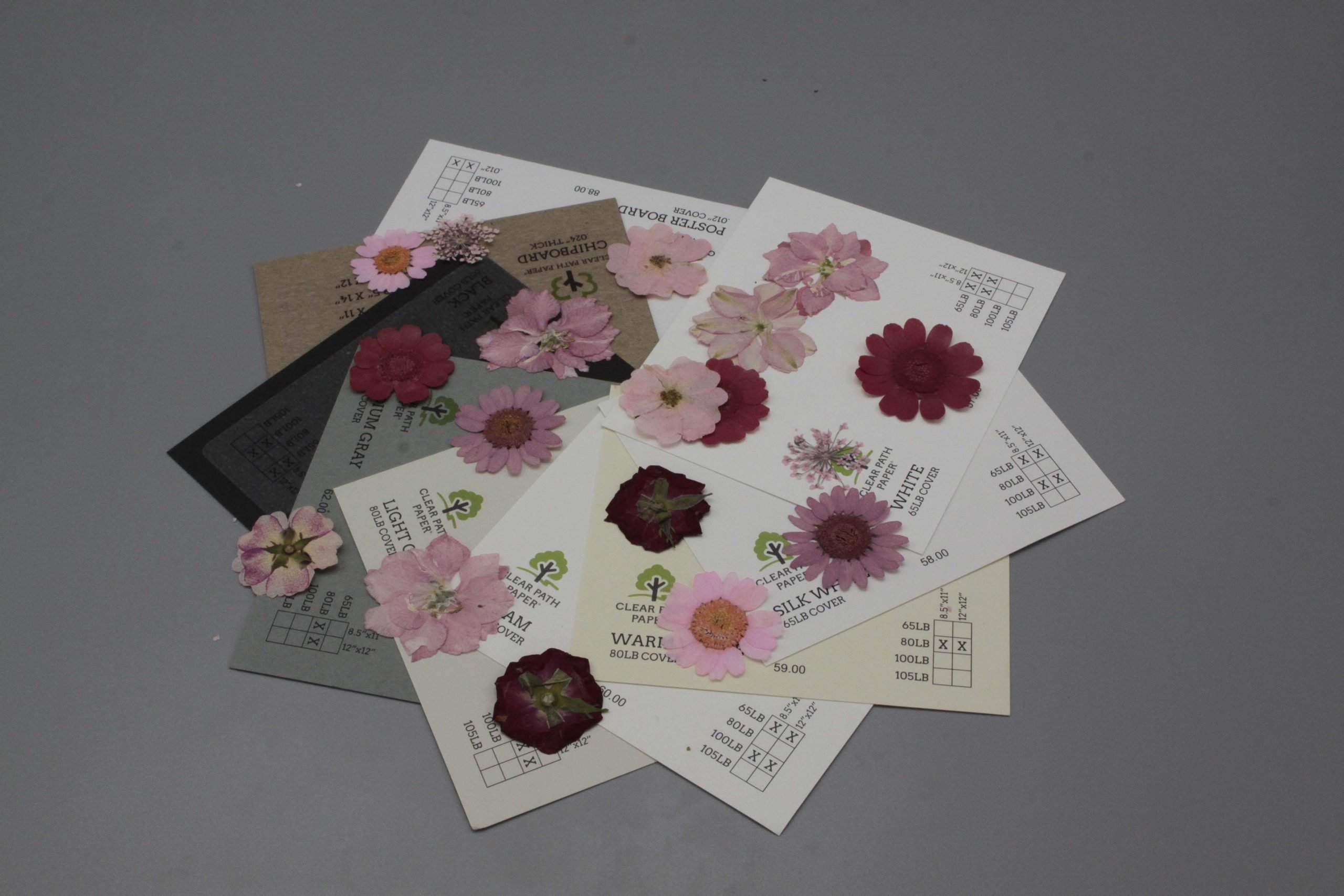 Image of Dreamtop Dried Flowers with Black, Gray, and White Cardstock